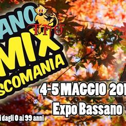 BASSANO COMIX &  DISCOMANIA